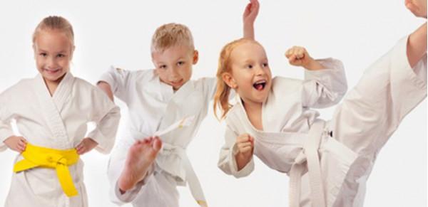 kyokushincrimea 11